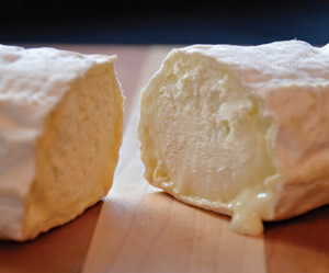 Amazing Acres cheese pic