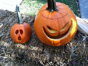 halloween pumpkins 10.30.13